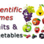 Scientific Names – Common Fruits and Vegetables