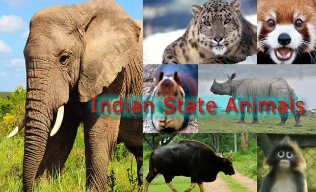 State-Animals-List-India